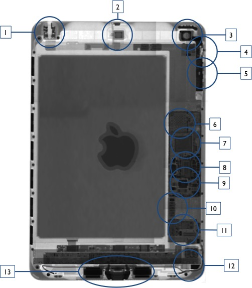 iPad-Mini-X-Ray-0